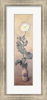 Framed White Poppy, 1883