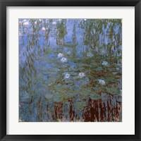 Framed Blue Nympheas