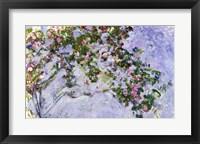 Framed Roses, 1925-26
