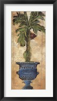 Framed Potted Palm III