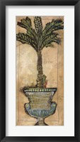 Framed Potted Palm IV