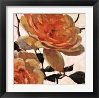 Framed Tangerine Dream I