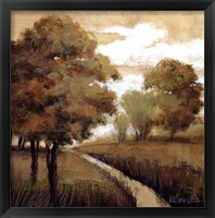 Framed Woodland Exposure II