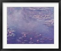 Framed Nympheas, 1906
