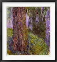 Framed Weeping Willow and the Waterlily Pond