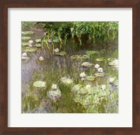 Framed Waterlilies at Midday, 1918