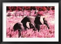 Framed Elephants - Standing