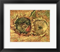 Framed Two Cut Sunflowers, 1887