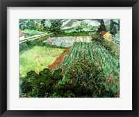 Framed Field with Poppies, 1889