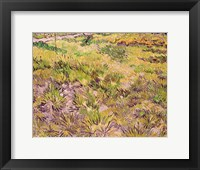 Framed Meadow with Butterflies, 1890