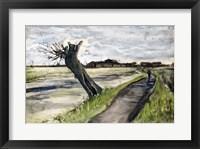 Framed Pollard Willow, 1882