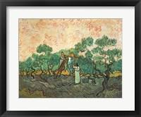 Framed Olive Pickers