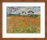 Framed Field of Poppies