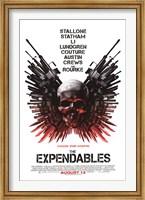 Framed Expendables - Skull