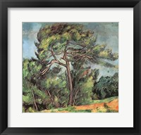 Framed Large Pine, c.1889