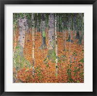 Framed Birch Wood, 1903