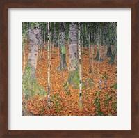 Framed Birch Wood, 1903