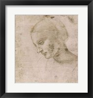 Framed Head of a Young Woman or Head of the Virgin