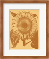Framed Sunflower 19