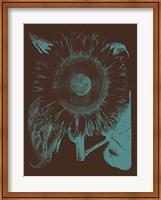 Framed Sunflower 6