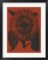 Framed Sunflower 9