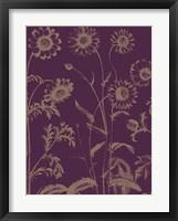 Framed Chrysanthemum 13