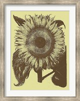 Framed Sunflower 4