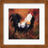 Framed Rooster #503