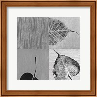 Framed Leaf Quad
