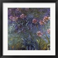 Framed Jewelry lilies