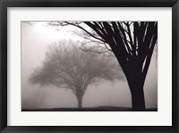 Framed Memories of Winter
