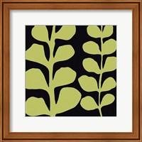 Framed Green Fern on Black