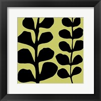 Framed Black Fern on Green