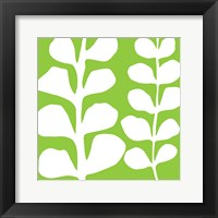Framed White Fern on Green