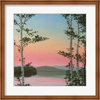 Framed Cooper Sunset Birches