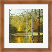 Framed Cooper Lake, Autumn
