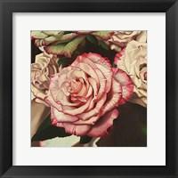 Framed Vintage Rose