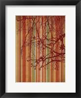 Framed Amber Stripe