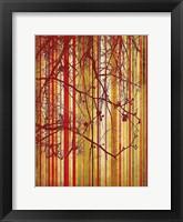 Framed Auburn Stripe