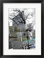 Framed Flatiron Collage
