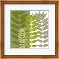 Framed Garden Greens