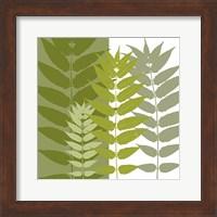 Framed Garden Greens