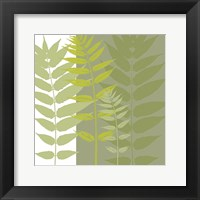 Field Greens Framed Print