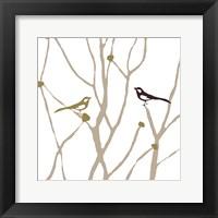 Little Bird Framed Print