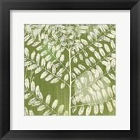Framed Forest Leaves