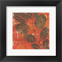 Framed Exotic Vine