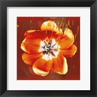 Framed Tulip Fresco (red)