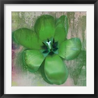 Framed Tulip Fresco (green)