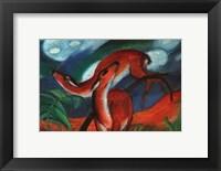 Framed Red Deer II