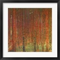 Framed Tannenwald II